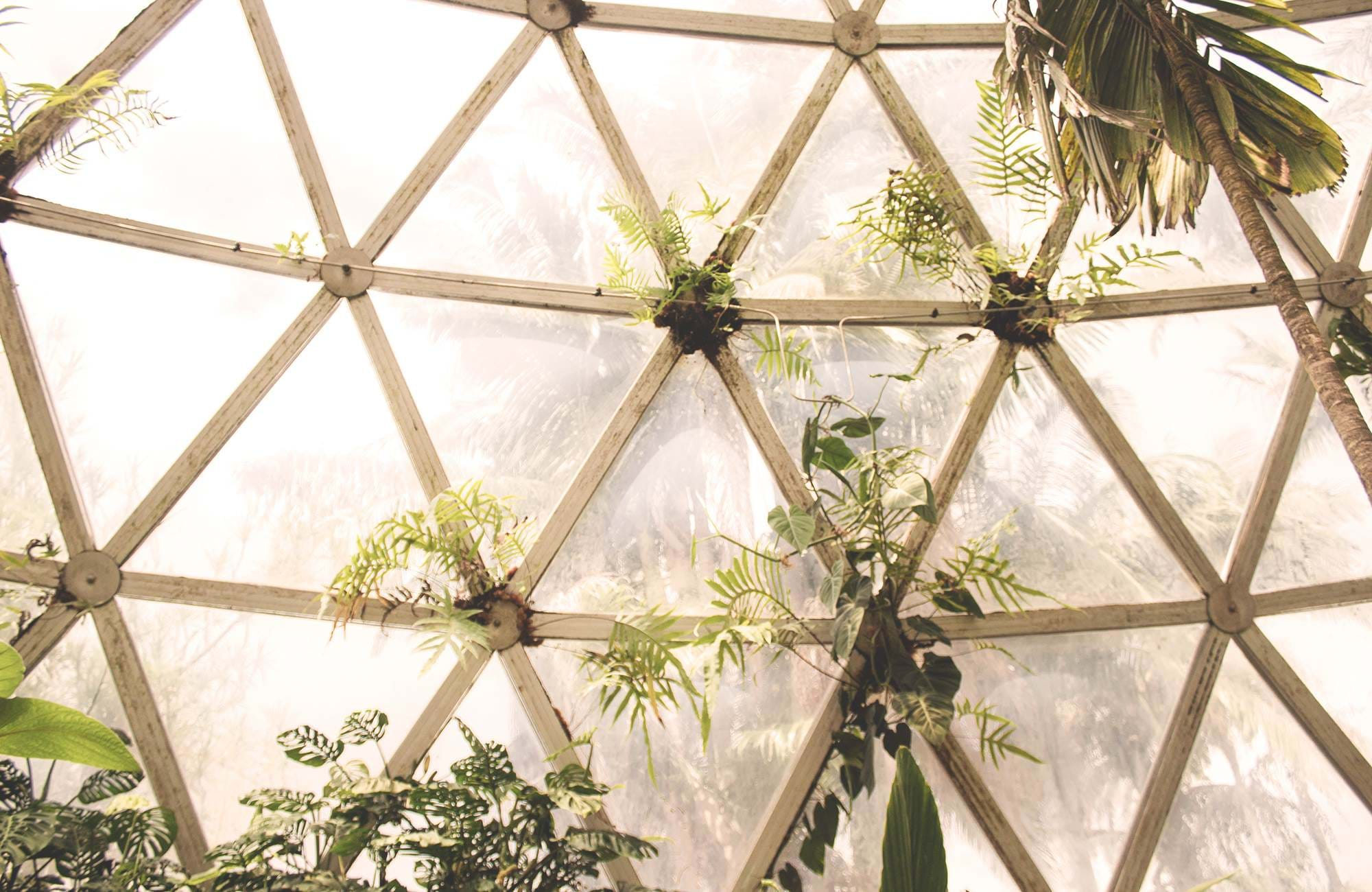 Backpacken in Australié