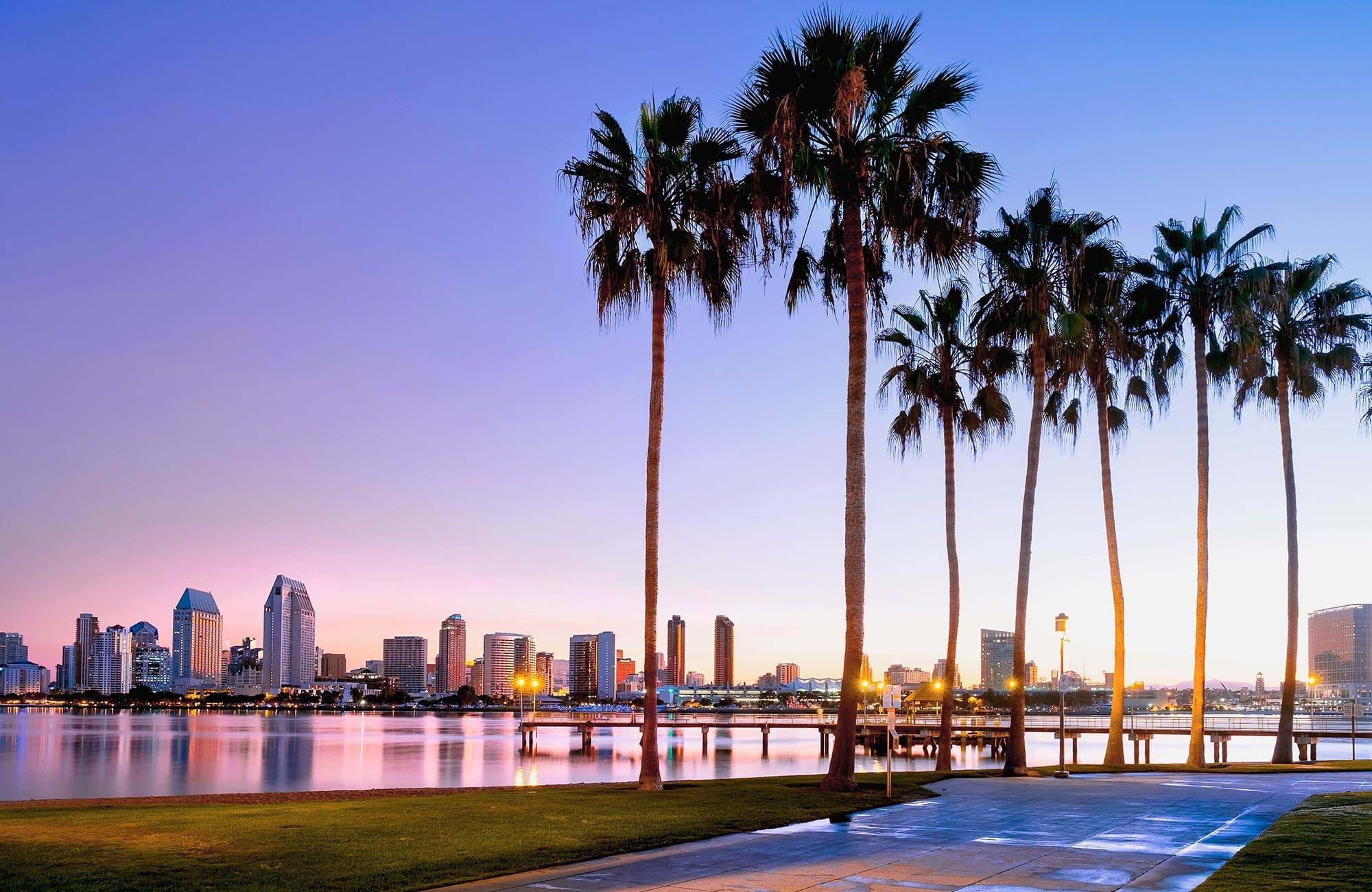 north-america-usa-san-diego-palmtree-water